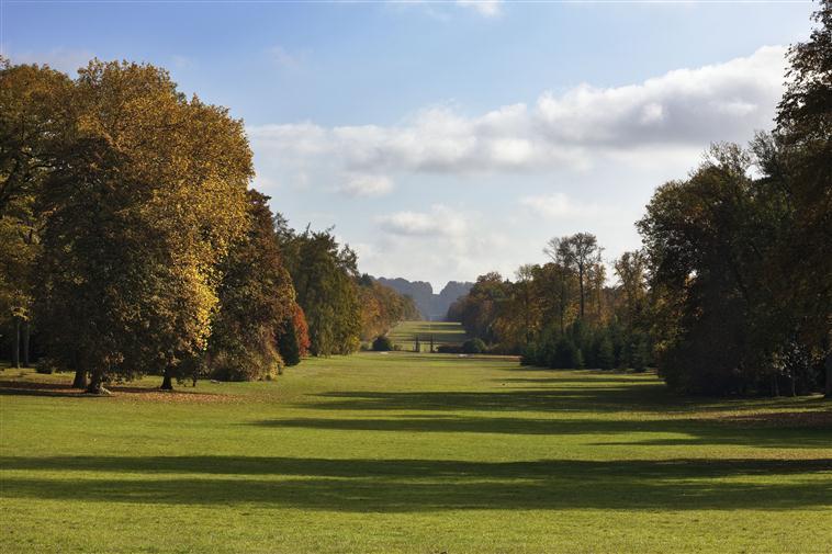 Parc du palais de Compiègne : la perspective de l'allée des Beaux-Monts